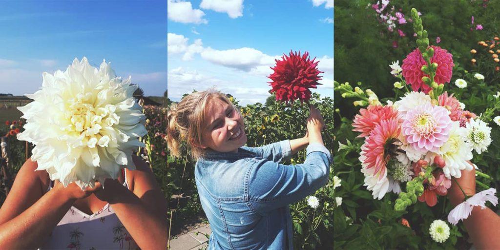 Kennis over bloemen
